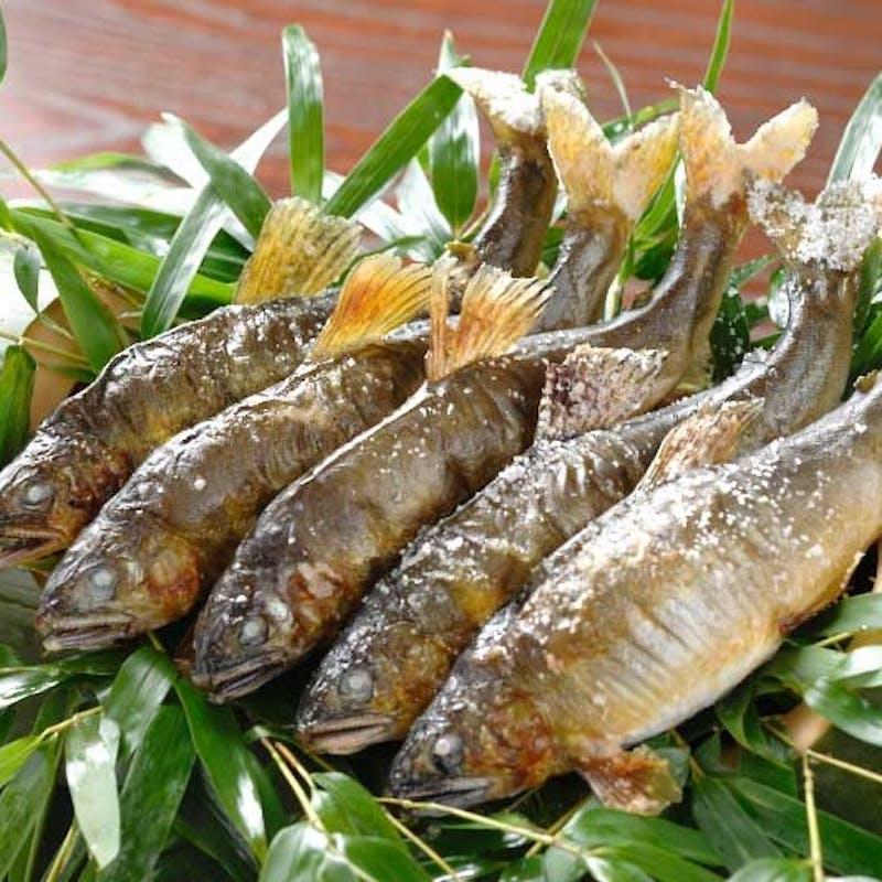 【涼み会席】名物料理「鮎の笹焼き」がついた川床会席(川床席確約)