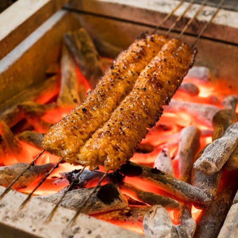 【おまかせコース】天然の鰻とすっぽんを中心とした全9品(9月限定)