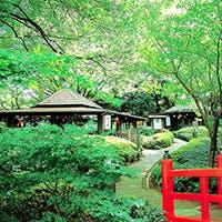 日本庭園の中で愉しむ、極上の和の空間