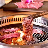 生物から焼きまで、厳選肉を堪能