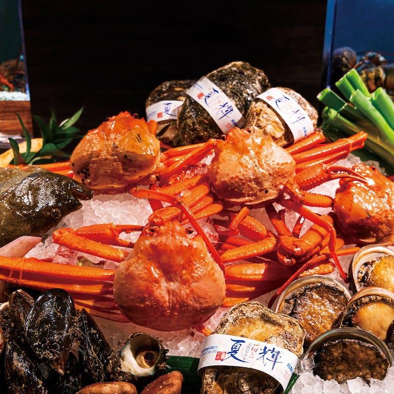 【スペシャルディナーコース】魚介、鳥取和牛ロースorヘレ等全8品