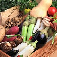 産地直送される旬の野菜本来の味わいを堪能