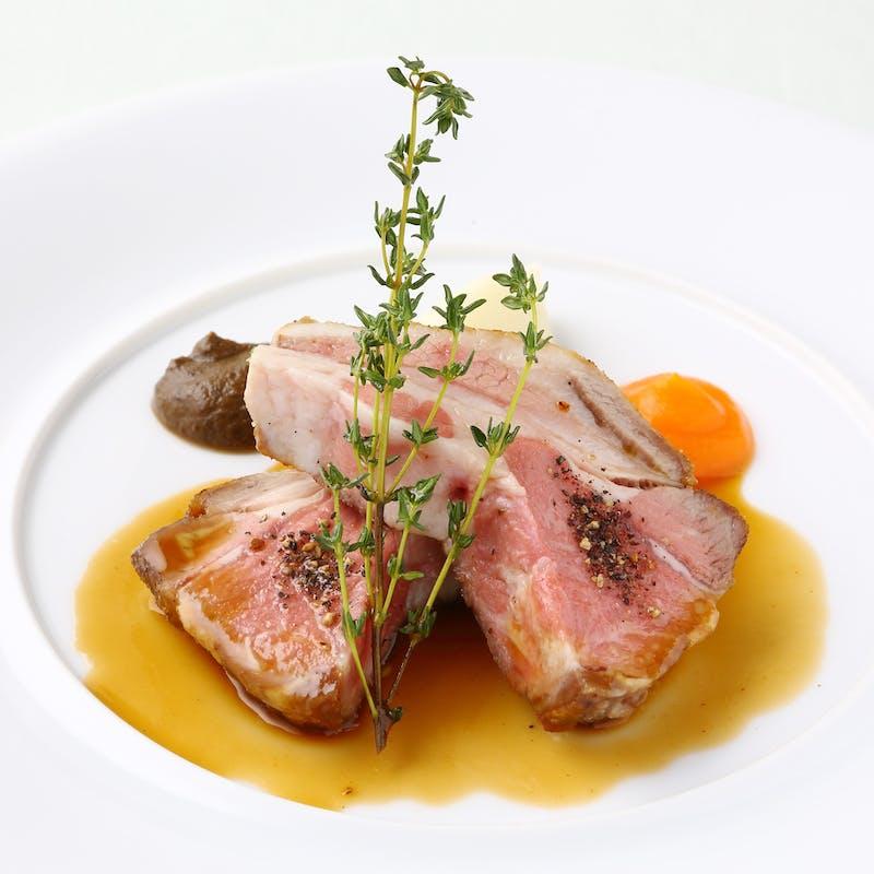 【アクアオリビンコース】前菜・魚料理or湘南ポーク肩肉のグリエ など全5品
