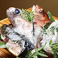 金沢直送の旬魚をご堪能