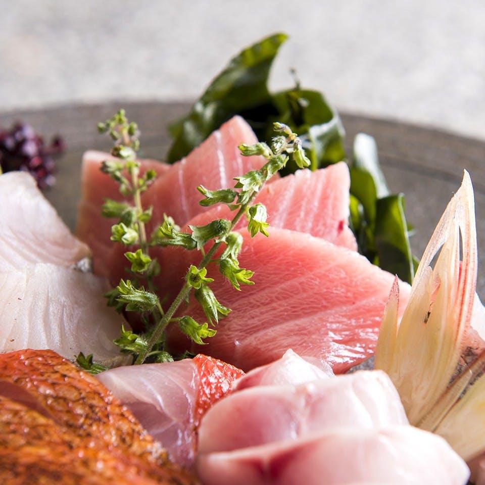 新鮮な相模湾鮮魚