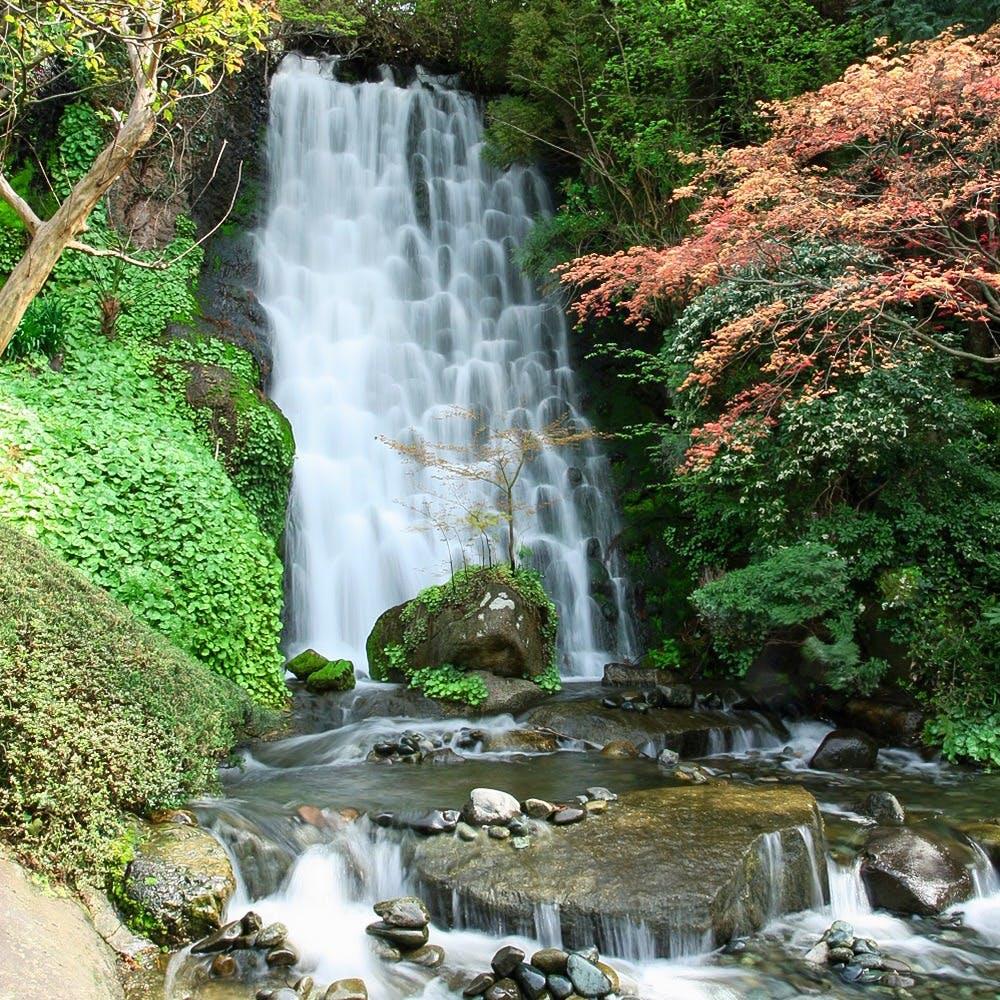 1500坪の日本庭園に面した贅沢な空間で、和のおもてなし