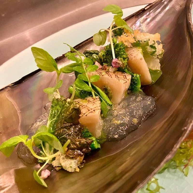 【楠 ~Kusunoki~】冷菜・温菜・魚料理・肉料理・デザート/計5品