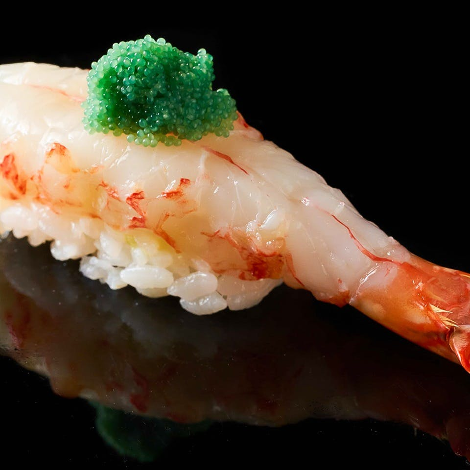寿司の世界大会日本代表が握る、本物の握り鮨
