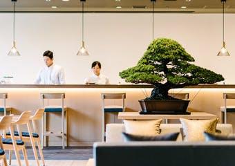 カンラ ラウンジ/ホテルカンラ京都