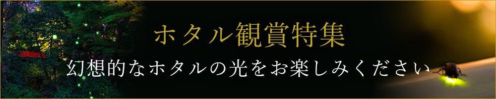 【ホタル観賞特集】