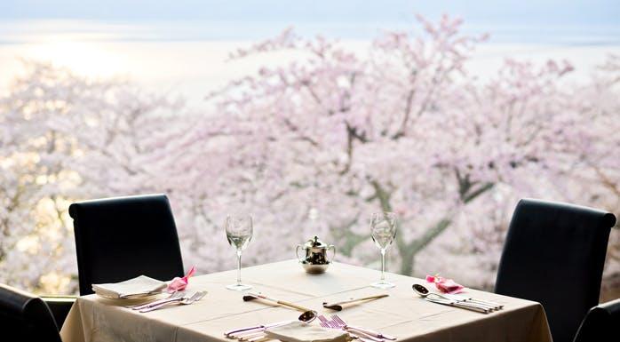 桜の見える席