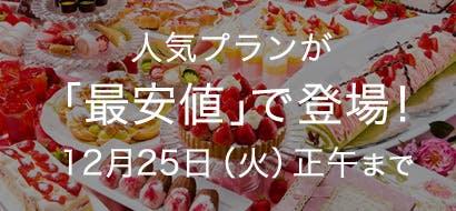 人気プラン最安値 12/10~12/25